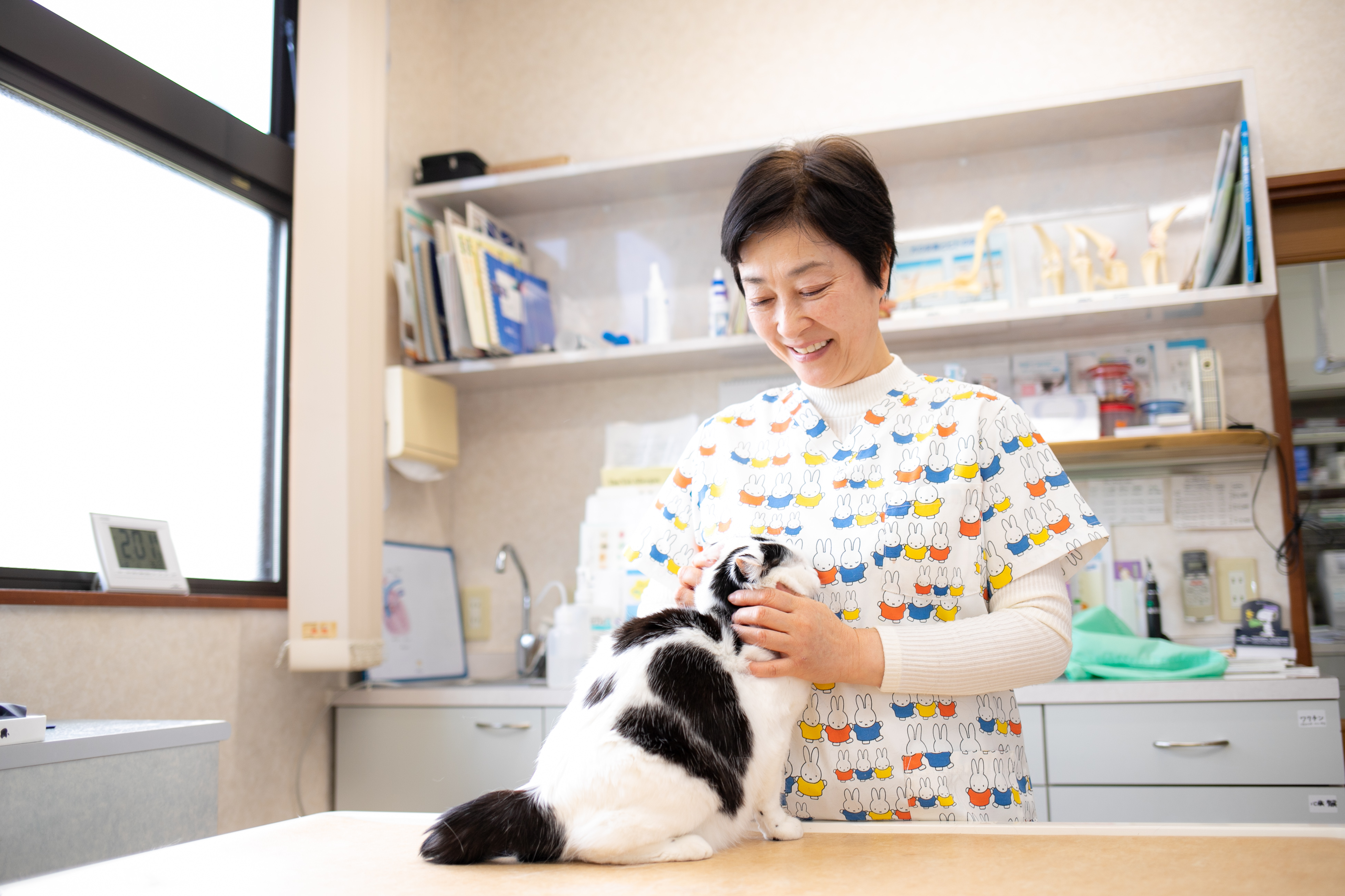 ひまわり動物病院様|株式会社MIRAIZUのHP制作事例