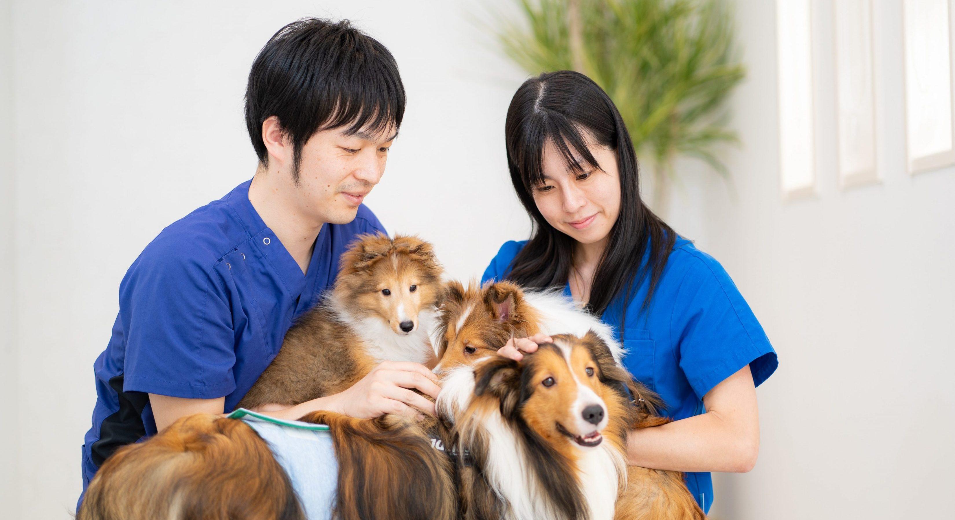 くさか動物病院様|宮城県でHP作成なら株式会社MIRAIZU